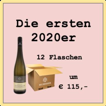 Buchegger die ersten 2020er